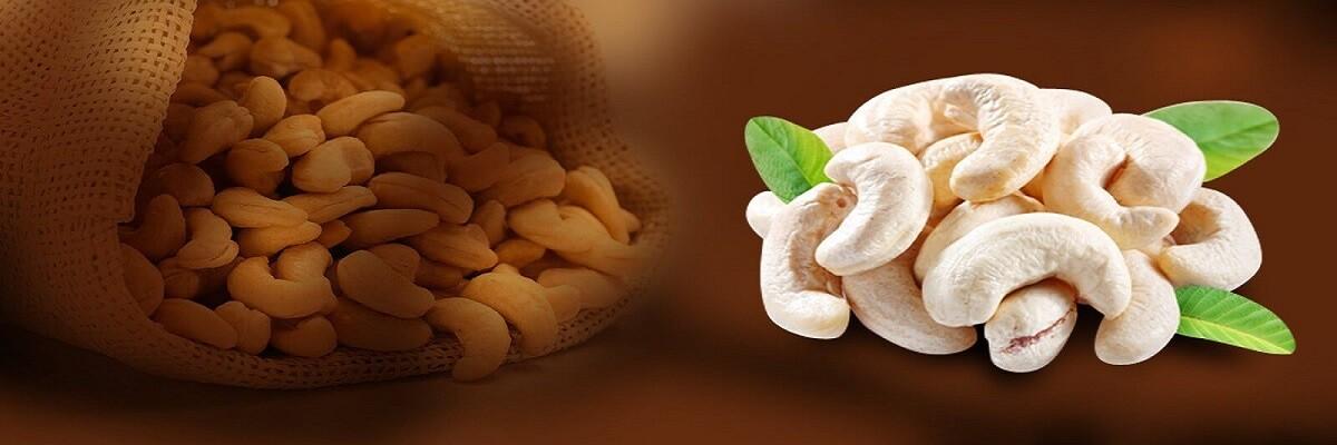 bismi-cashew-banner